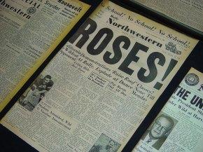rosesfull