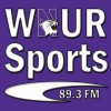 Northwestern Baseball Report- Episode 3
